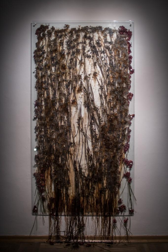 Anya Gallacio, Preserve 'Beauty', fot.Studio FilmLOVE